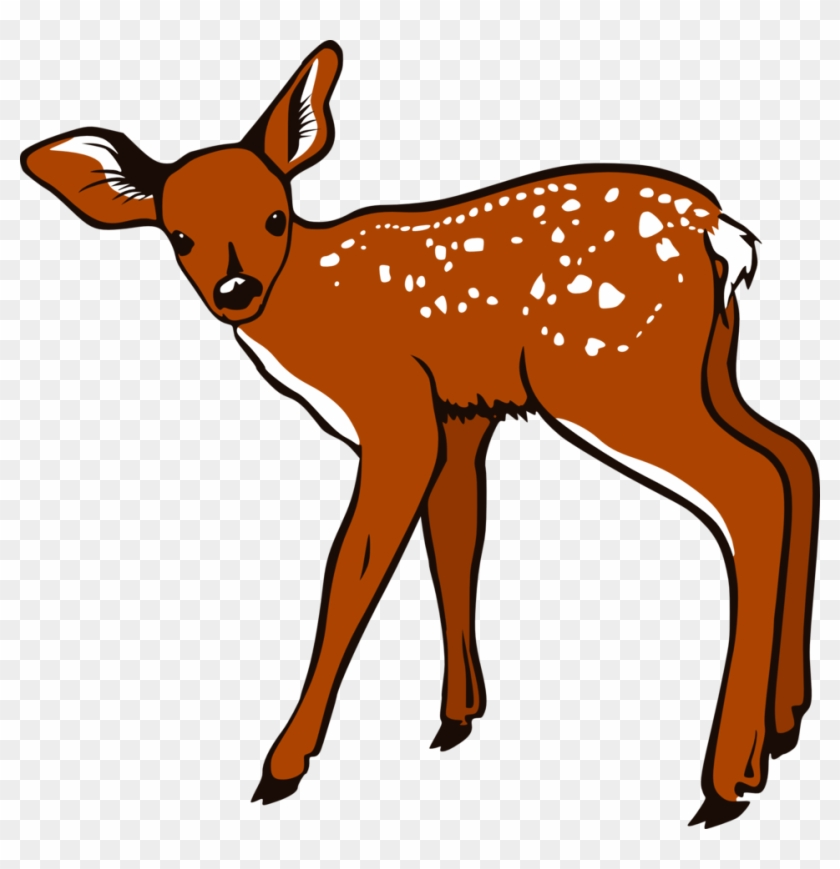 Deer clipart white tailed deer. Free dear baby on