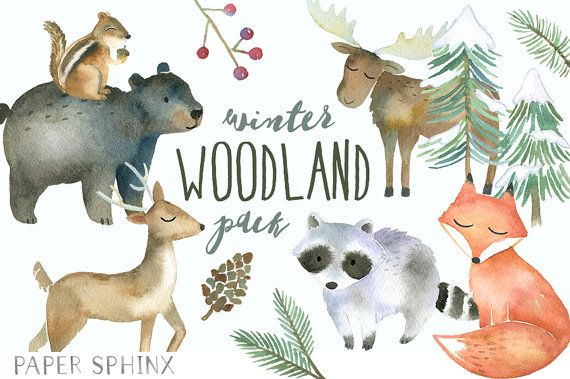 Woodland animals watercolor forest. Deer clipart winter