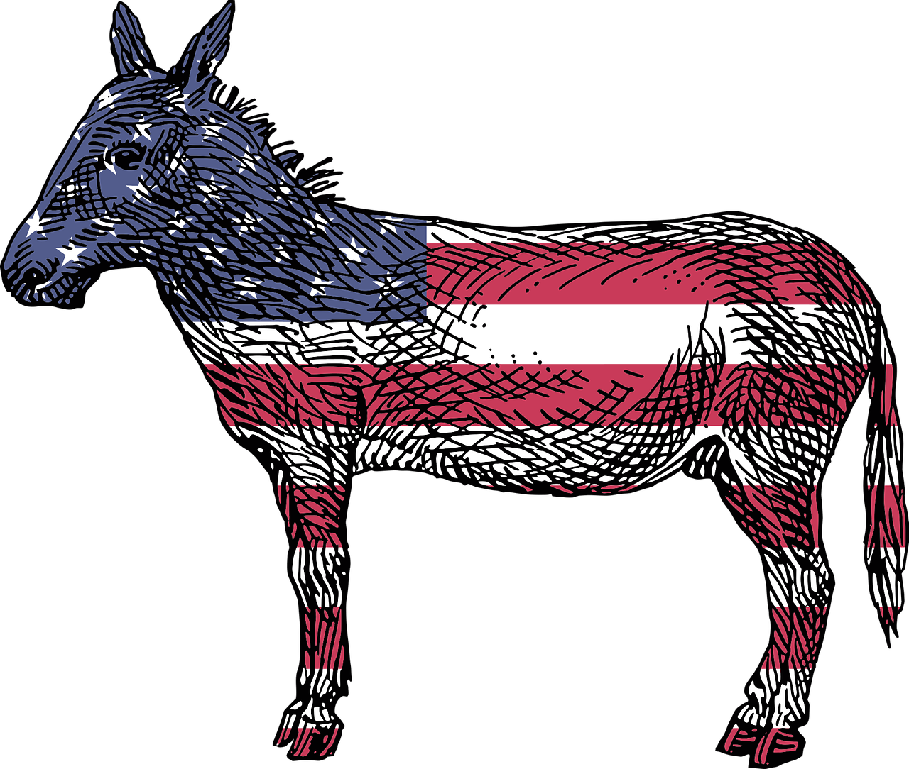 Calling out democrats liberals. Donkey clipart hates