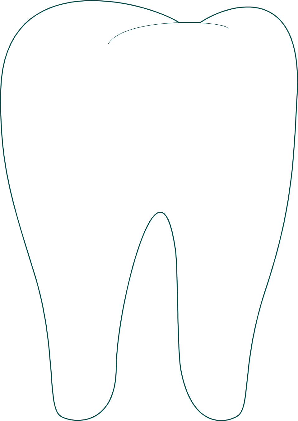 collection of transparent. Tooth clipart file