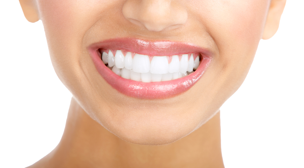 Free png teeth transparent. Tooth clipart file