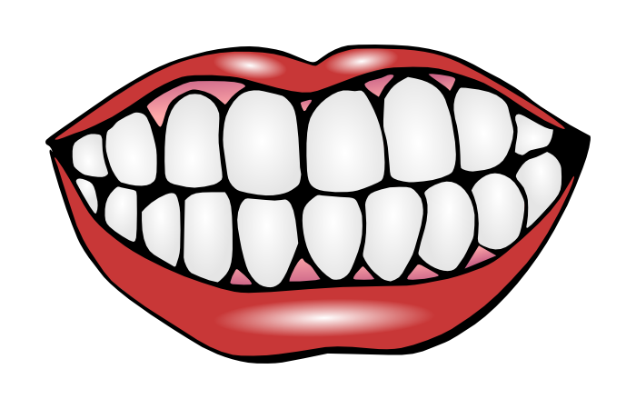 Tooth clipart open mouth. Speedy denture repair services