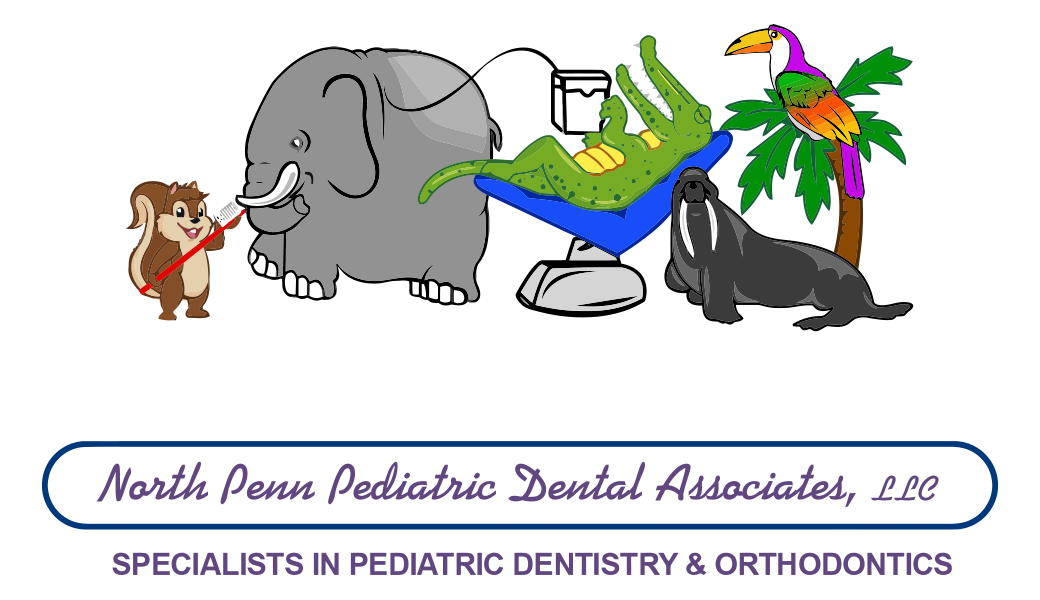 Orthodontic treatment lansdale pa. Doctors clipart dentist