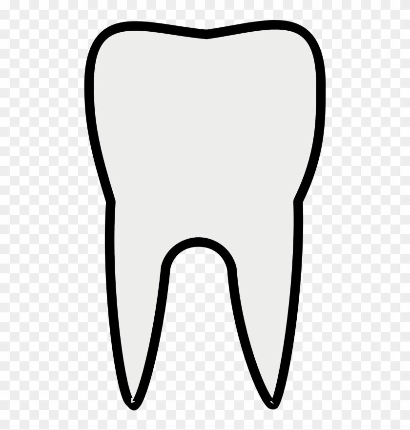 Teeth premolar hd png. Tooth clipart plain