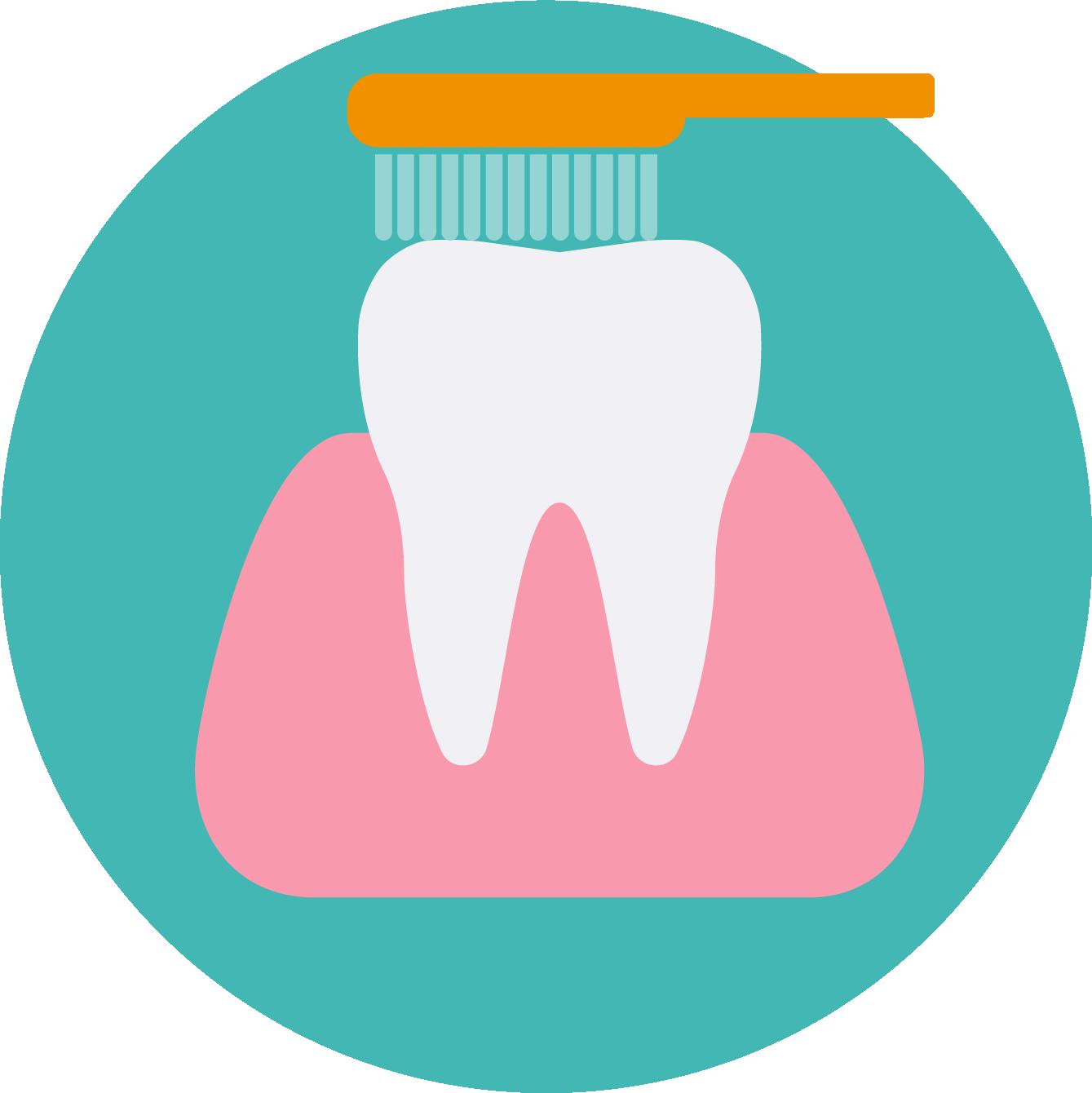 Home diem dental east. Dentist clipart numb