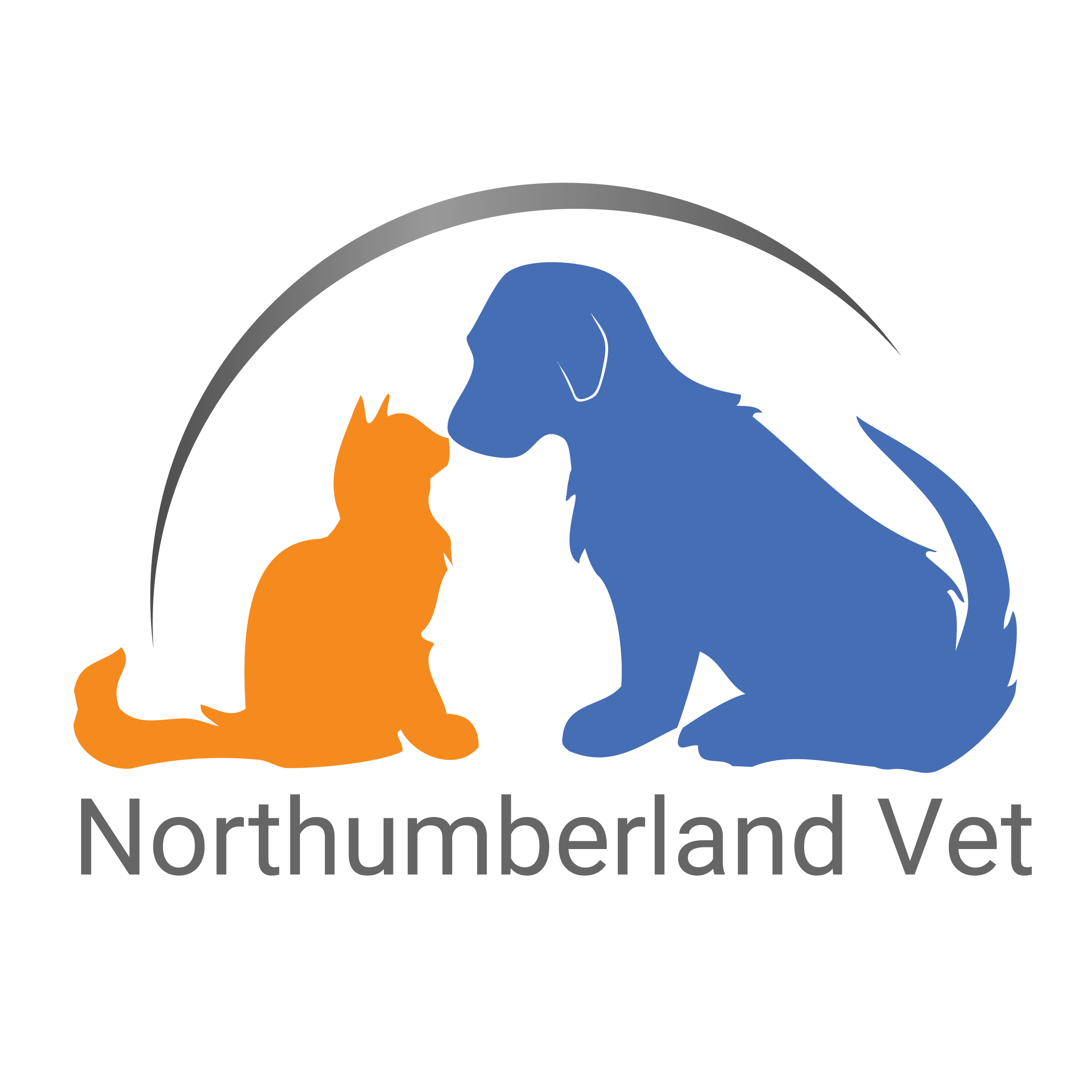 Dentist clipart pet dental. Dentistry northumberland veterinary services