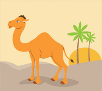 Free clip art pictures. Camel clipart