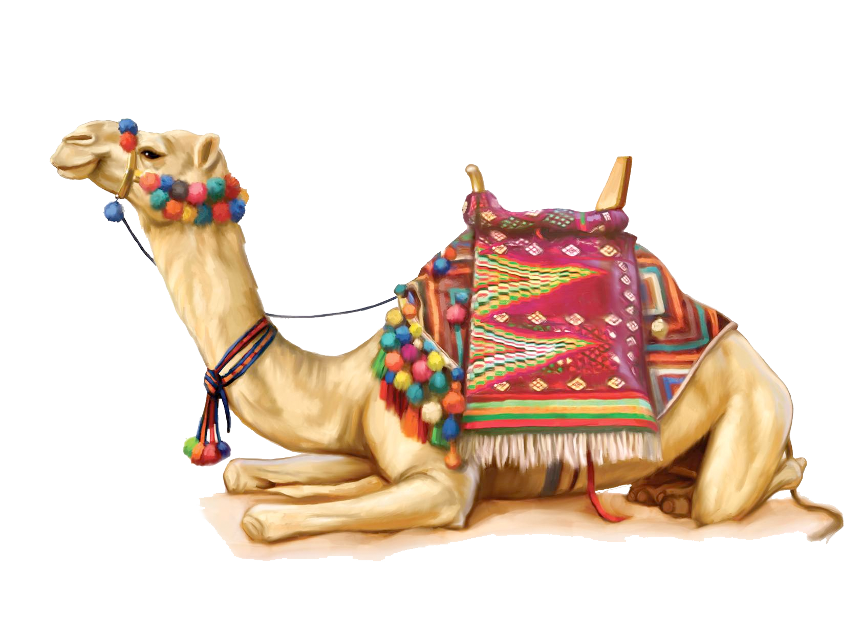 Desert clipart camel egyptian. Camels in the png