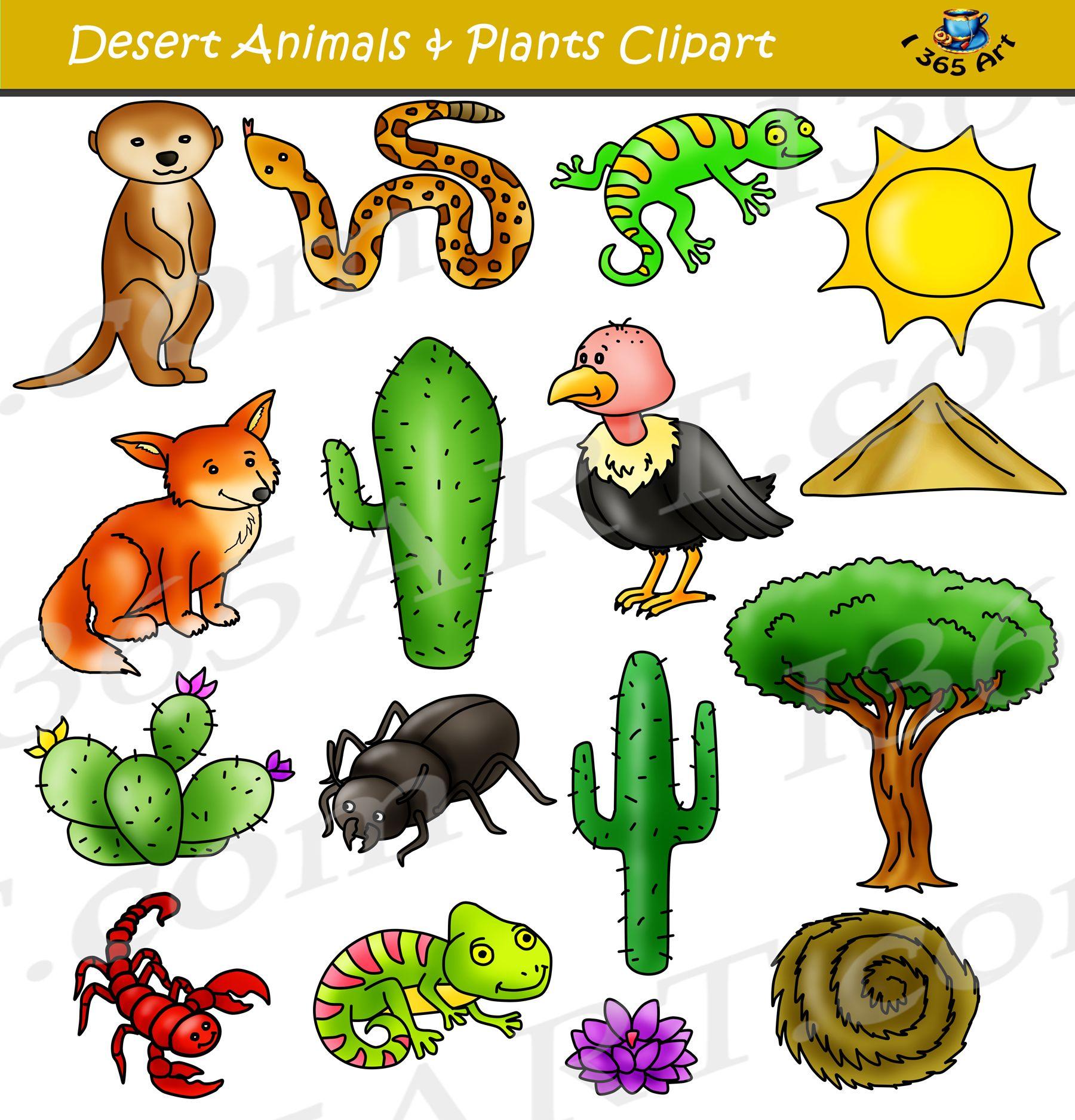 Desert clipart desert environment. Set animals terrain classroom