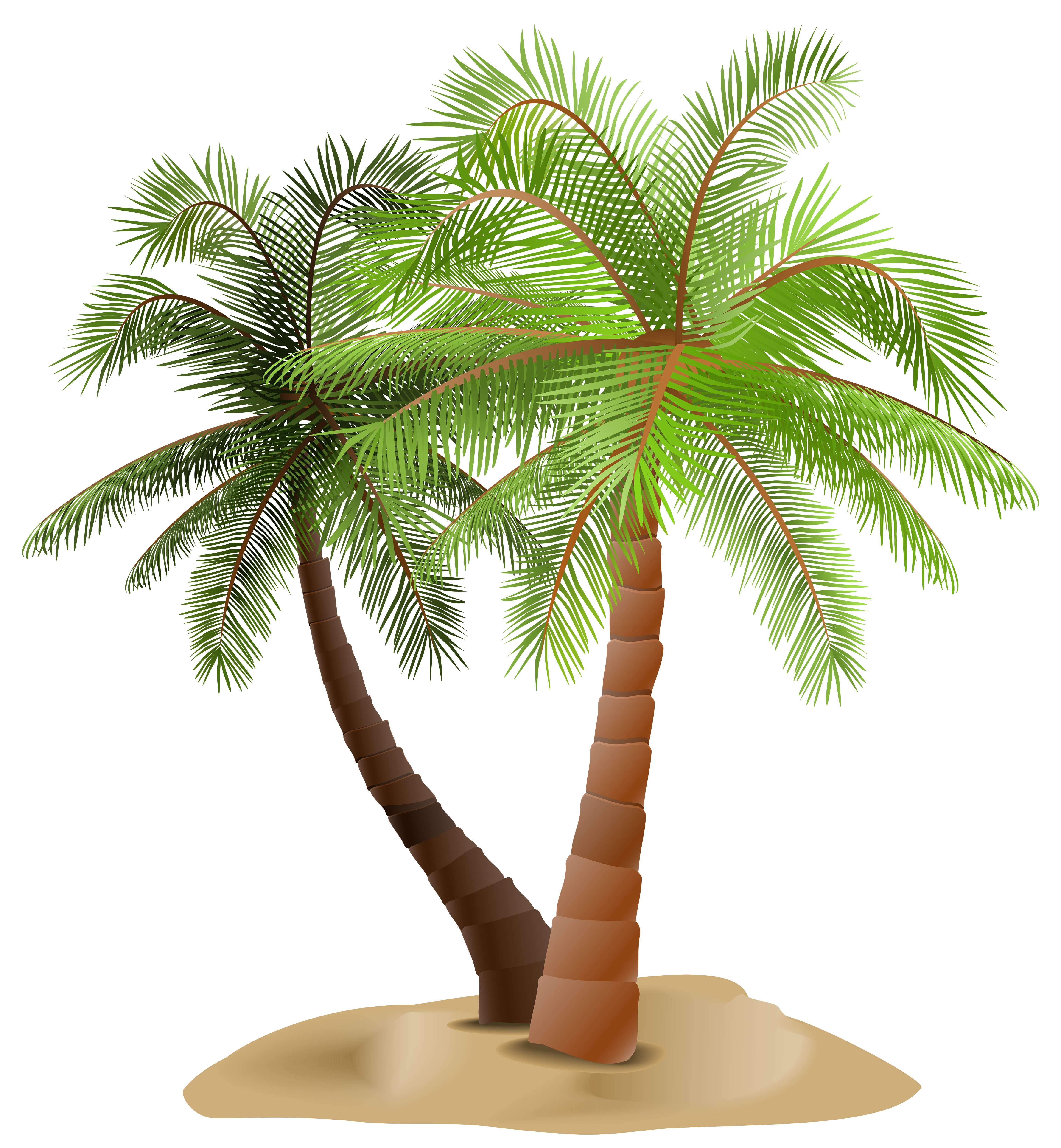 Palms in transparent png. Desert clipart desert sand