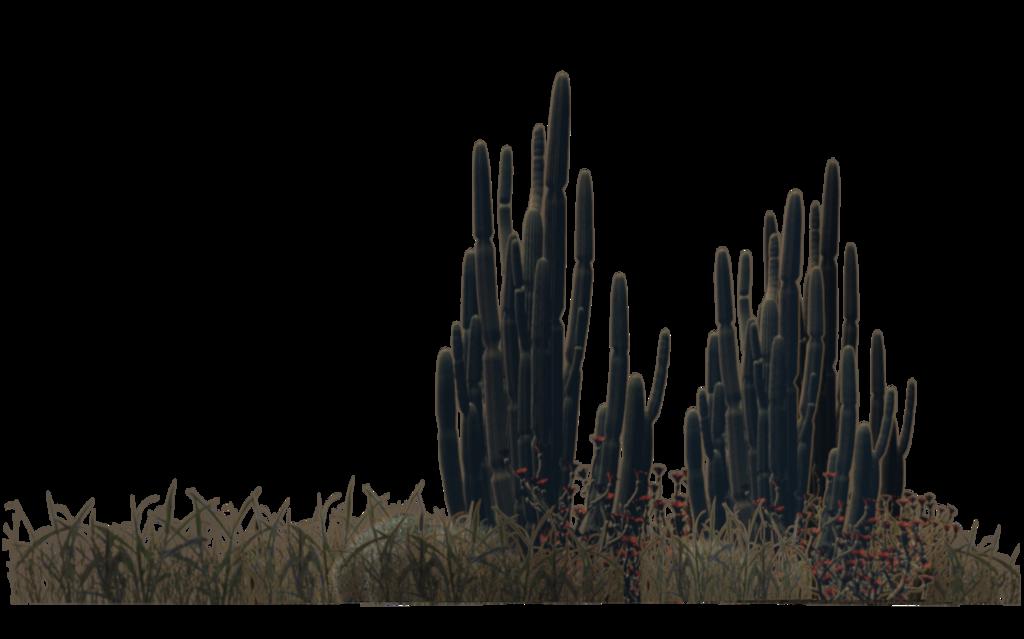 Desert clipart desert scenery. Plants by wolverine deviantart