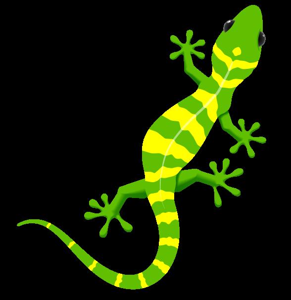 Image alhovic pintura pinterest. Gecko clipart small lizard