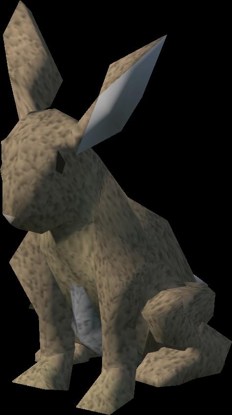 Rabbit runescape wiki fandom. Desert clipart hare