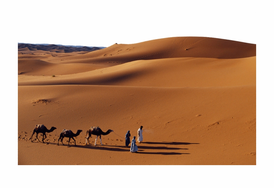 Desert clipart journey. With camels in the