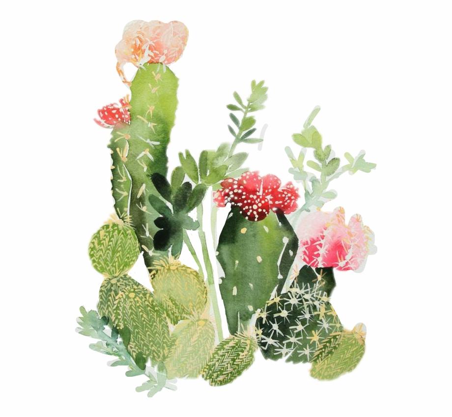 Desert clipart nopale. Nopales sticker by cactus