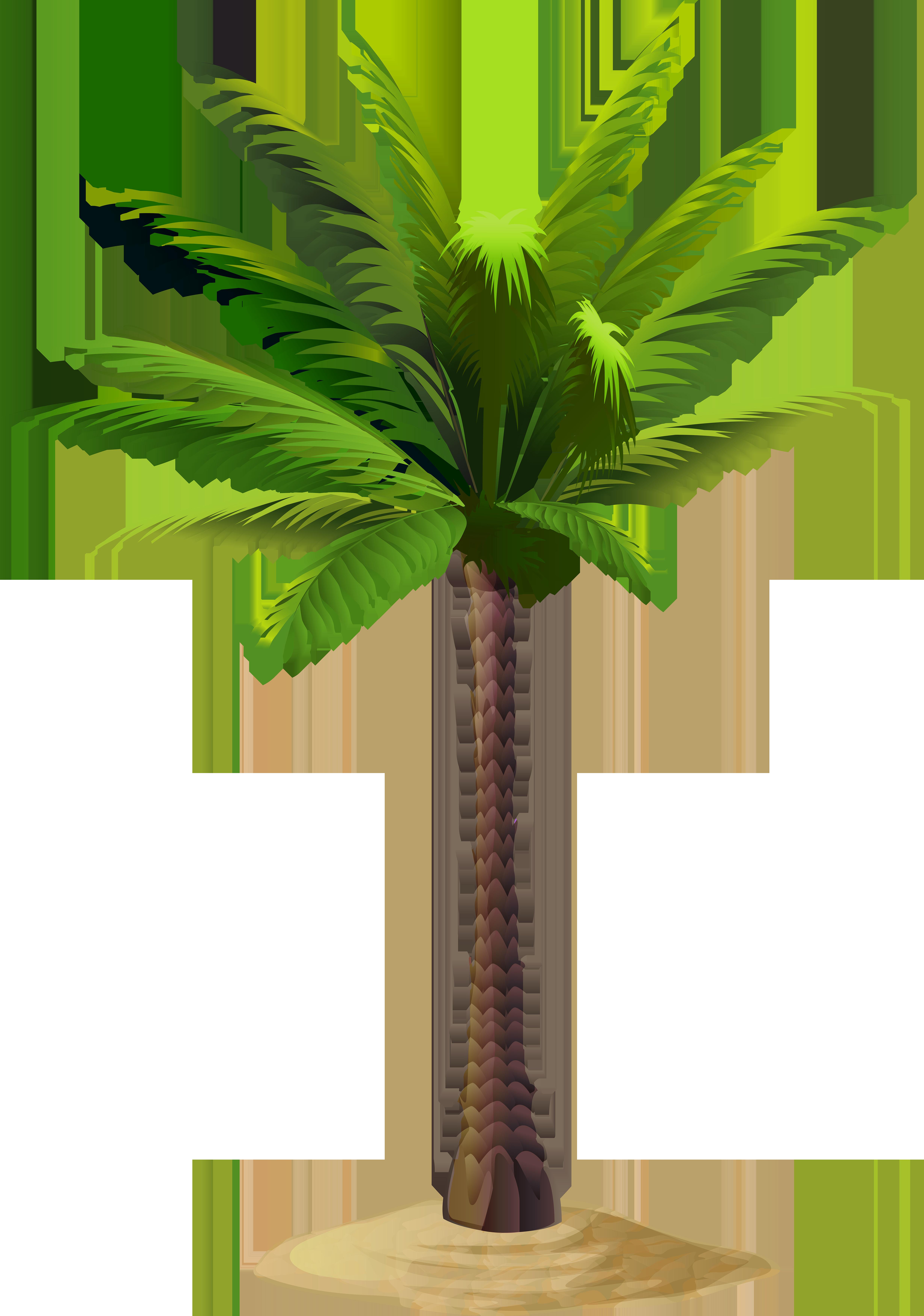Free png clip art. Desert clipart palm tree desert