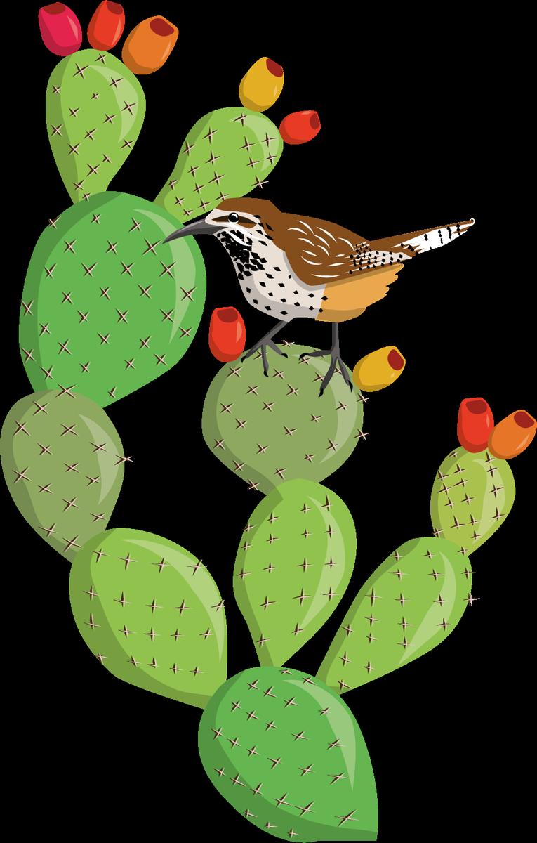 Zolin studio on twitter. Desert clipart prickly pear