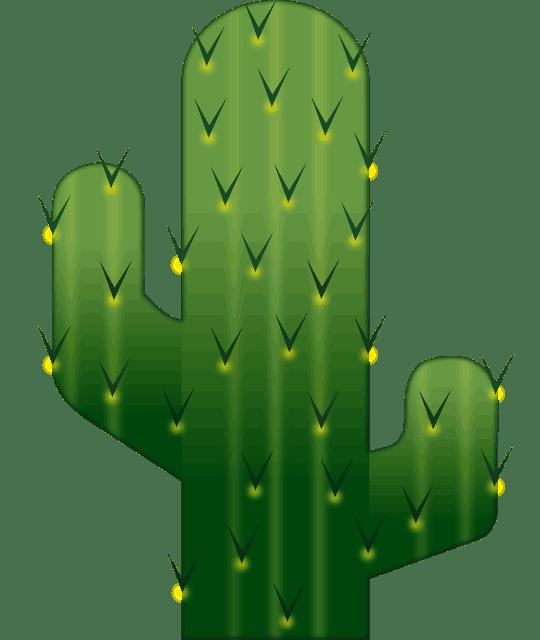 Desert clipart prickly pear. Cactus set hand drawn