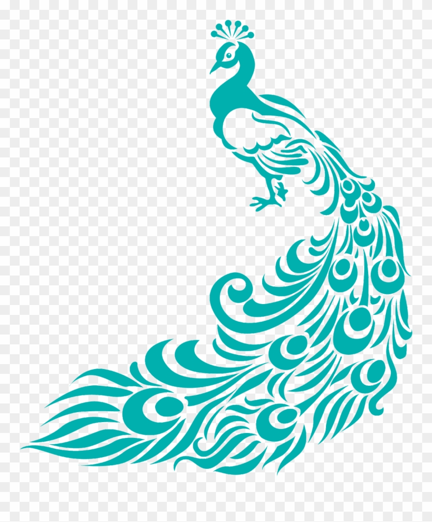 Border designs for assignment. Peacock clipart turquoise