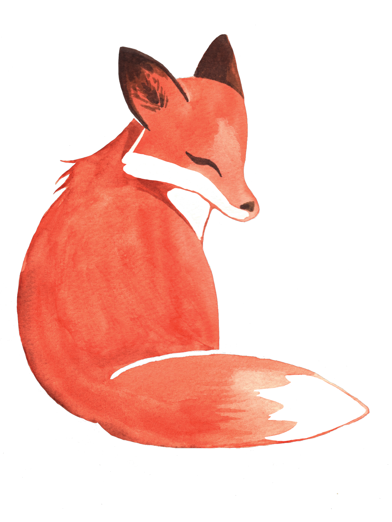 Diamond clipart watercolor. Weileash fox available on