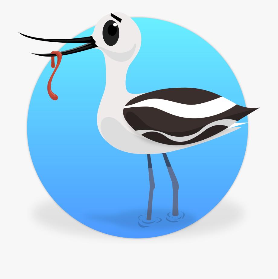Dictionary clipart cartoon. Tern water bird cliparts