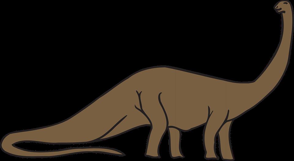 Long neck clip art. Dinosaur clipart apatosaurus