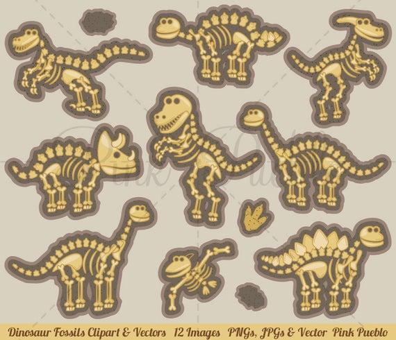 Clip art bones fossils. Dinosaur clipart dinosaur bone