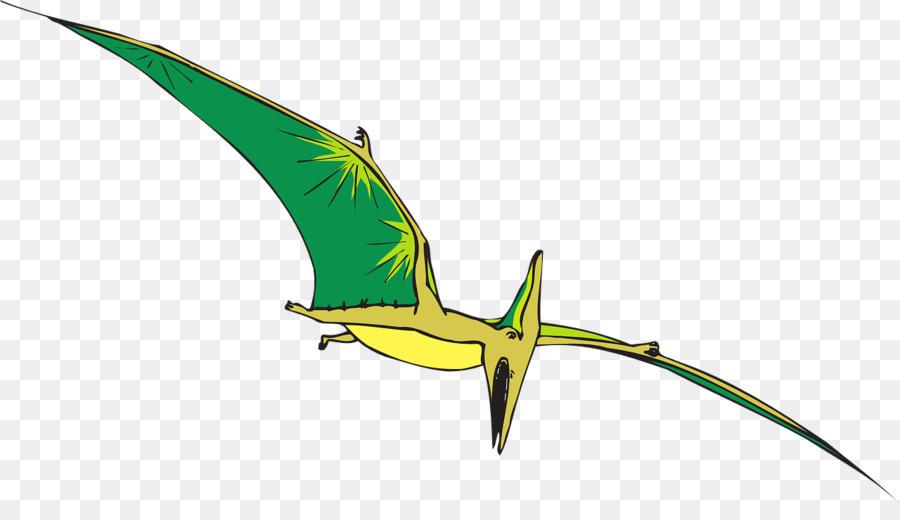 Bird wing transparent clip. Dinosaur clipart pteranodon