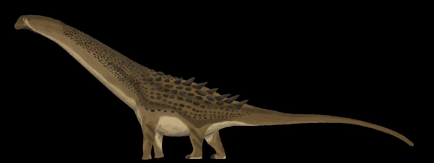Dinosaur clipart swamp. Detailed alamosaurus by paleop