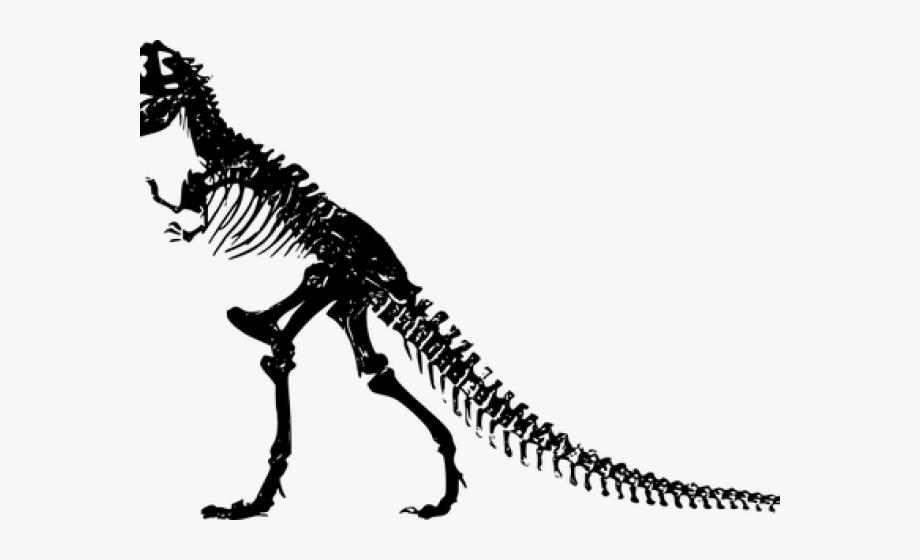 Trex clipart fossil. Dinosaur vintage t rex