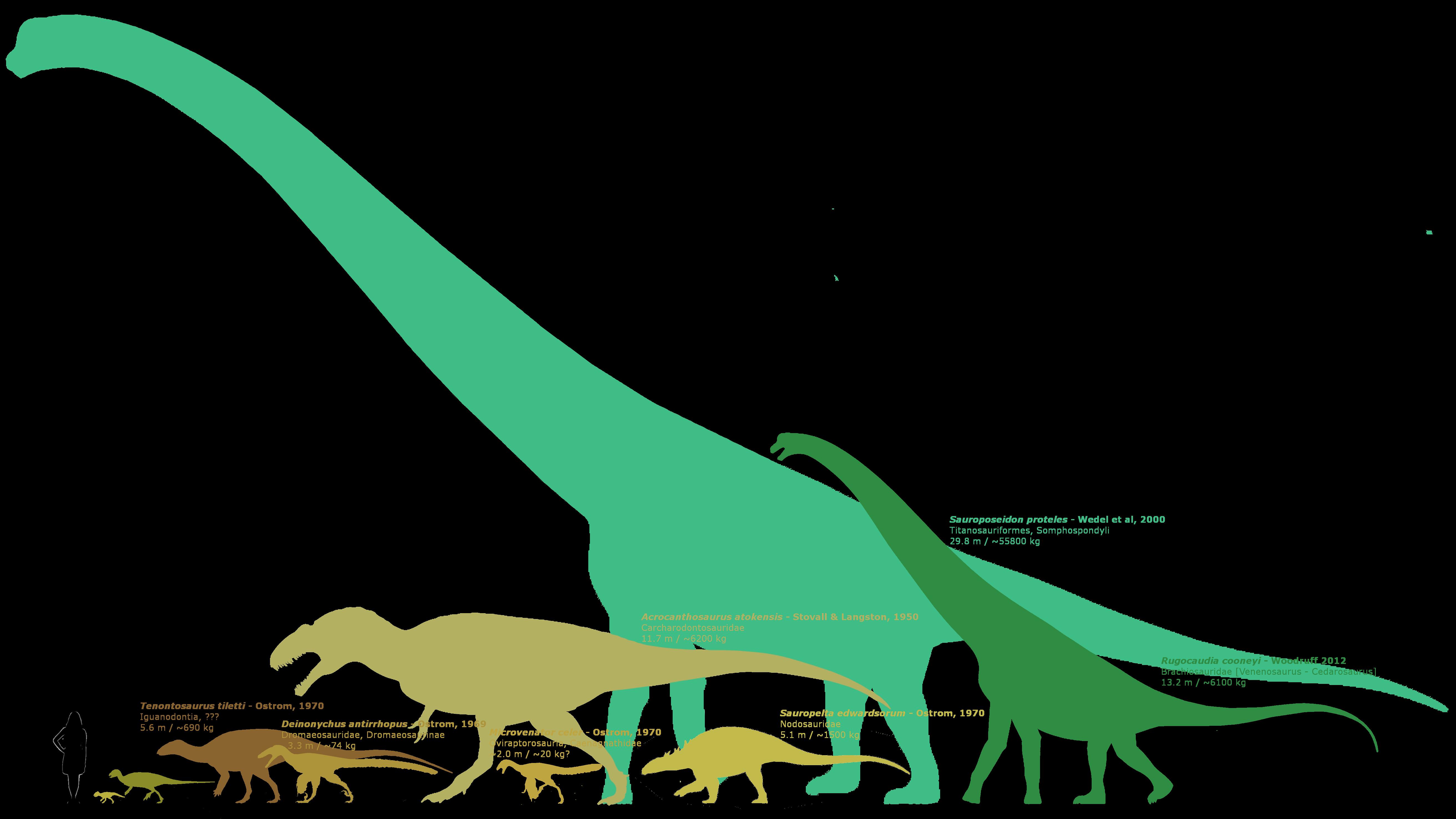 Cloverly formation taxa by. Dinosaurs clipart scary dinosaur