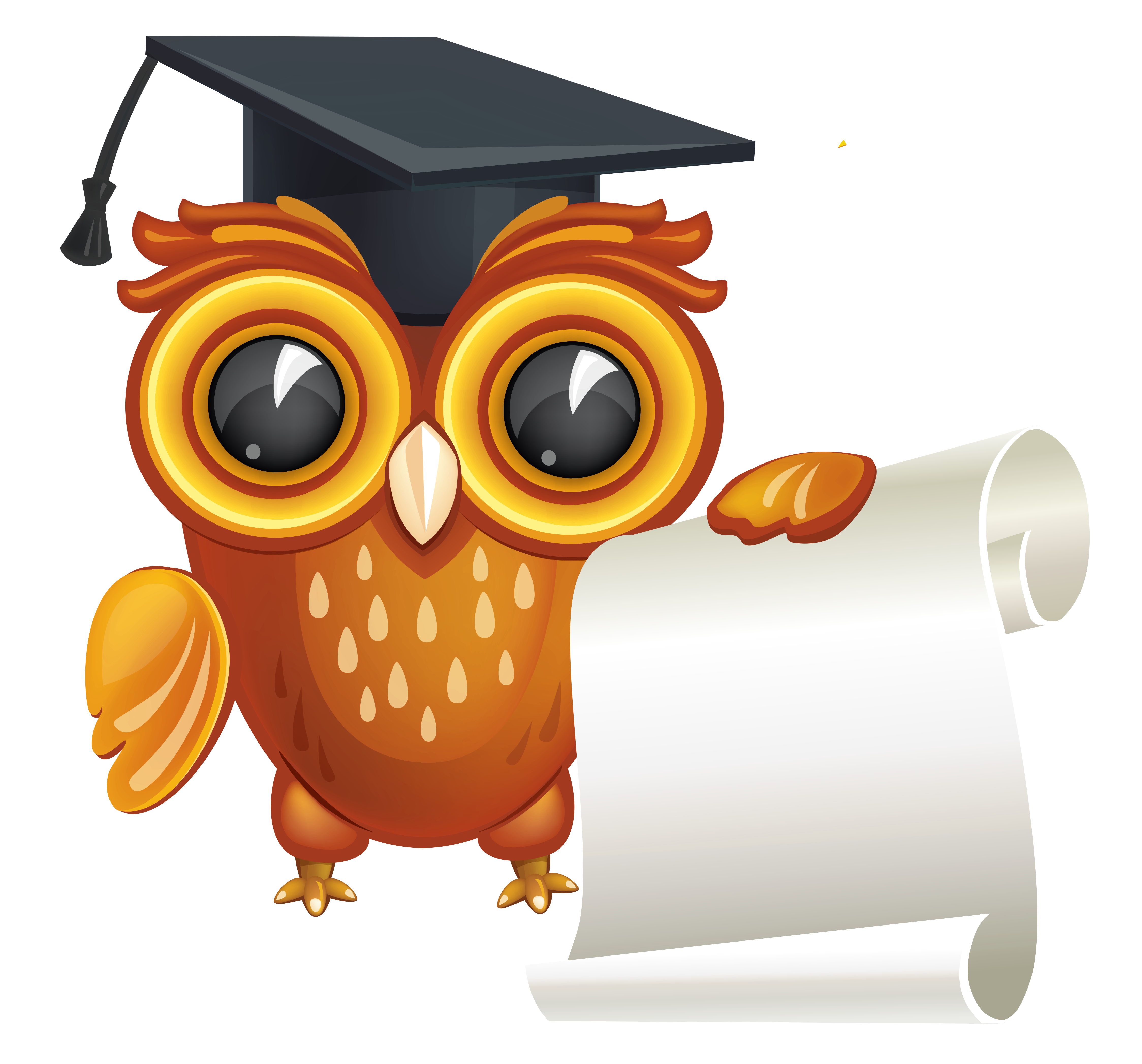 Owl with png image. Diploma clipart