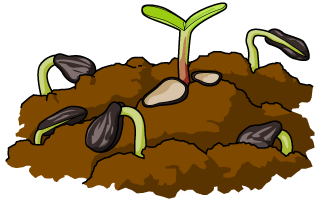 Free cliparts download clip. Seedling clipart garden soil