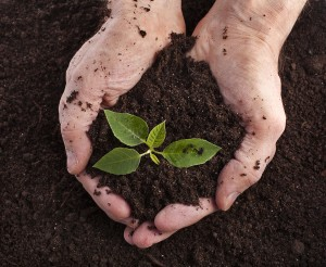 Kinds of the on. Dirt clipart clay soil