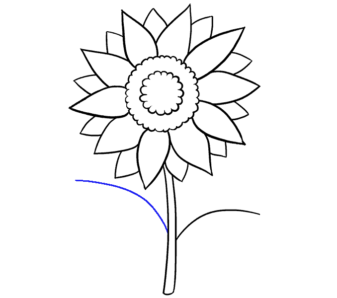 Sunflower outline drawing at. Dirt clipart drawn
