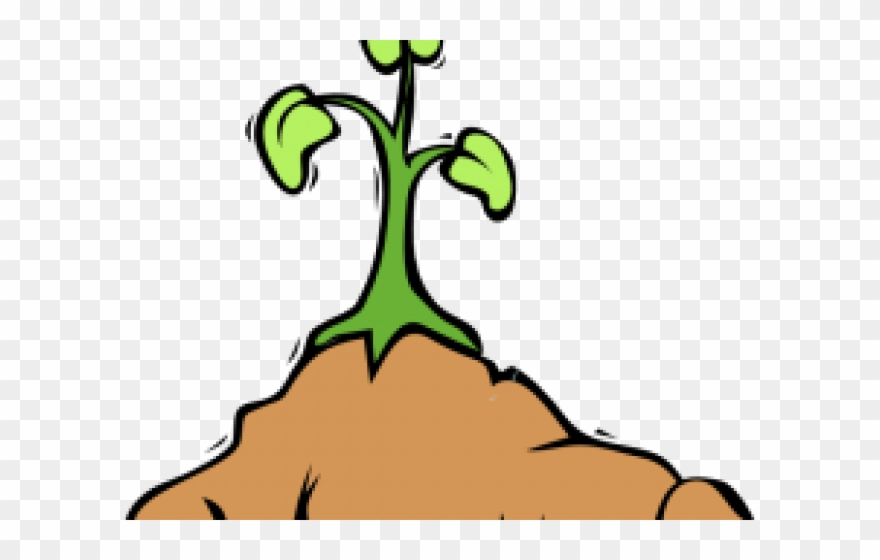 Cartoon plant growing png. Dirt clipart kind student