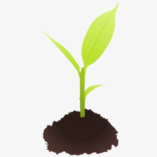 Seed emblem free cliparts. Dirt clipart small plant