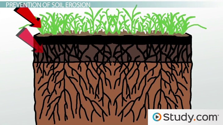 Erosion effects prevention video. Geology clipart importance soil