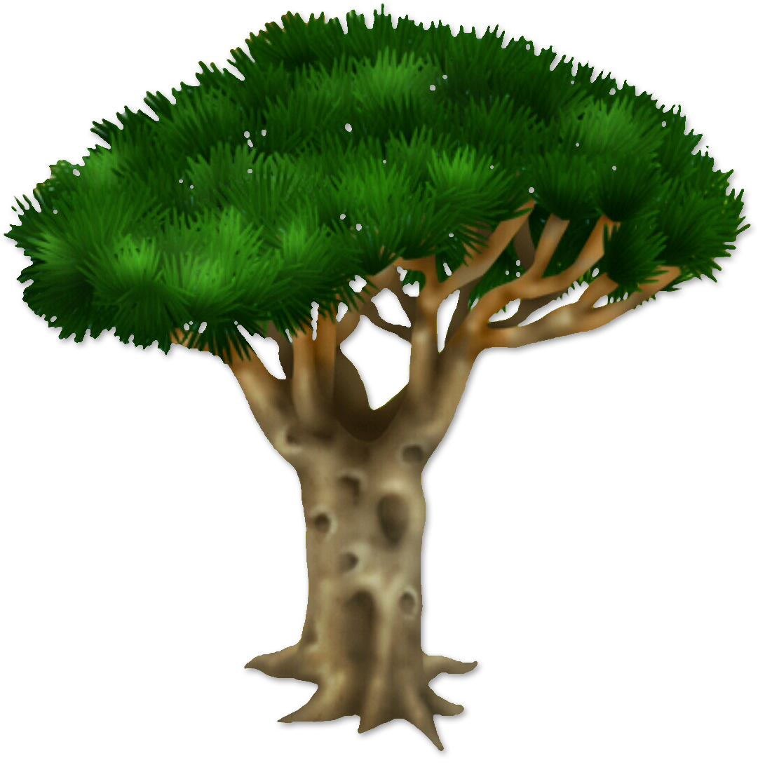 Image dragon blood tree. Dirt clipart terrestrial plant