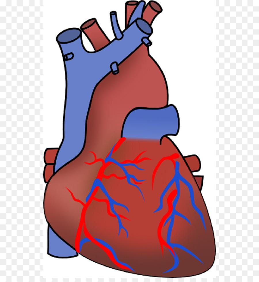 Myocardial infarction heart failure. Disease clipart