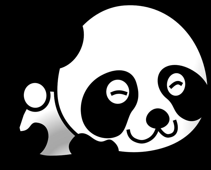 Dust clipart black and white. Rare chinese panda