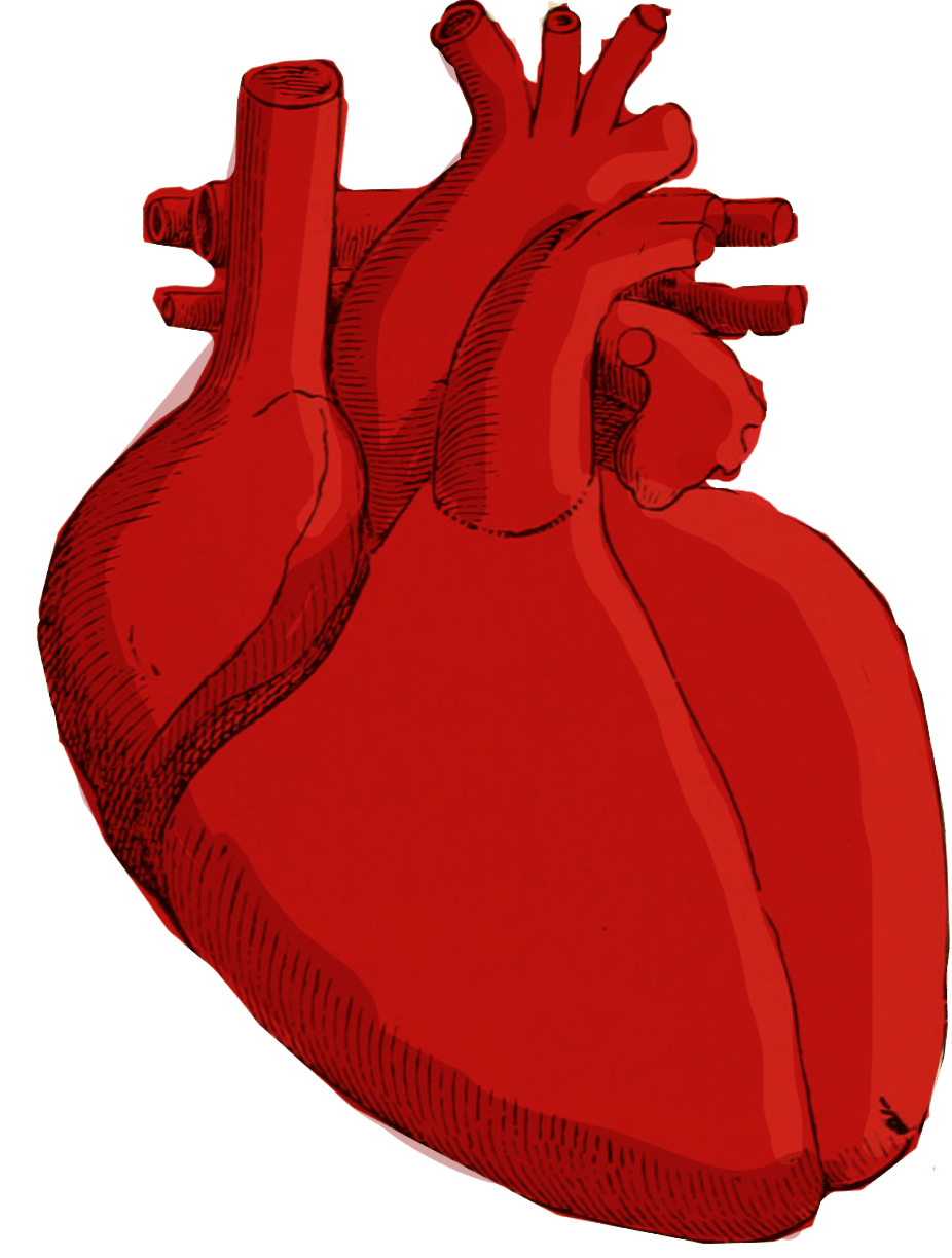 Watch your sodium for. Disease clipart cardiac