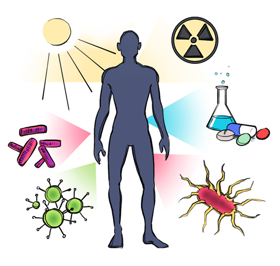 Disease clipart caused. Autoimmune everything you need