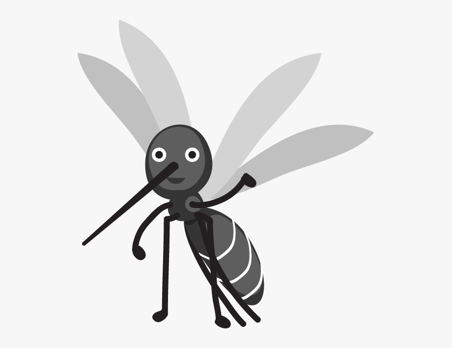 Fly clipart harmful insect. Flies mosquito images cartoon