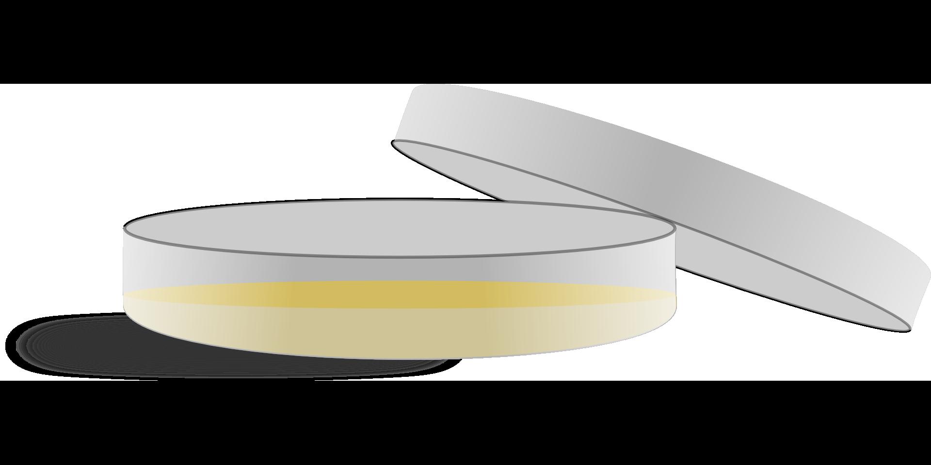 Petri plate cell clip. Dishes clipart agar clipart