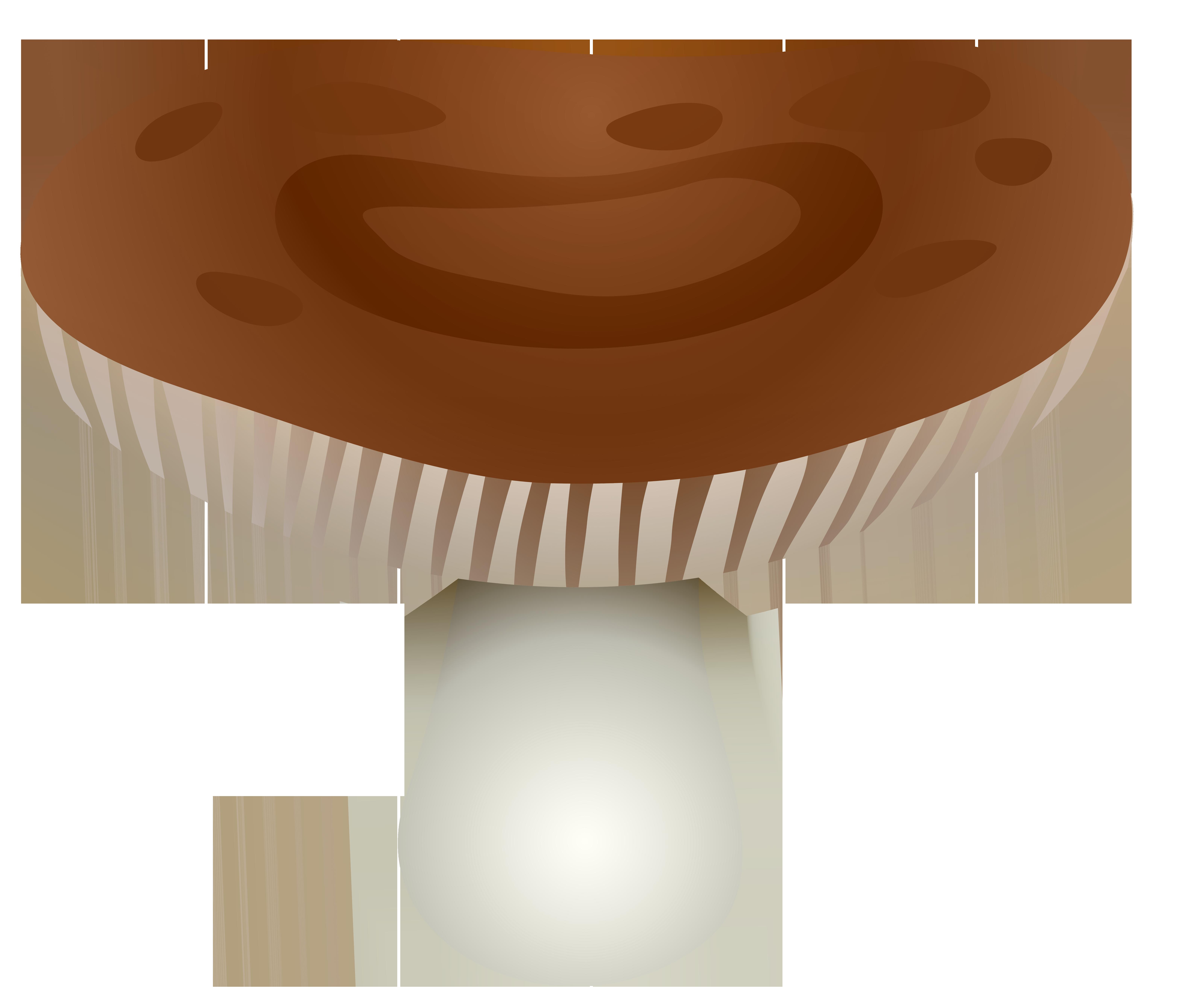 Brown transparent png best. Mushroom clipart mushroom home
