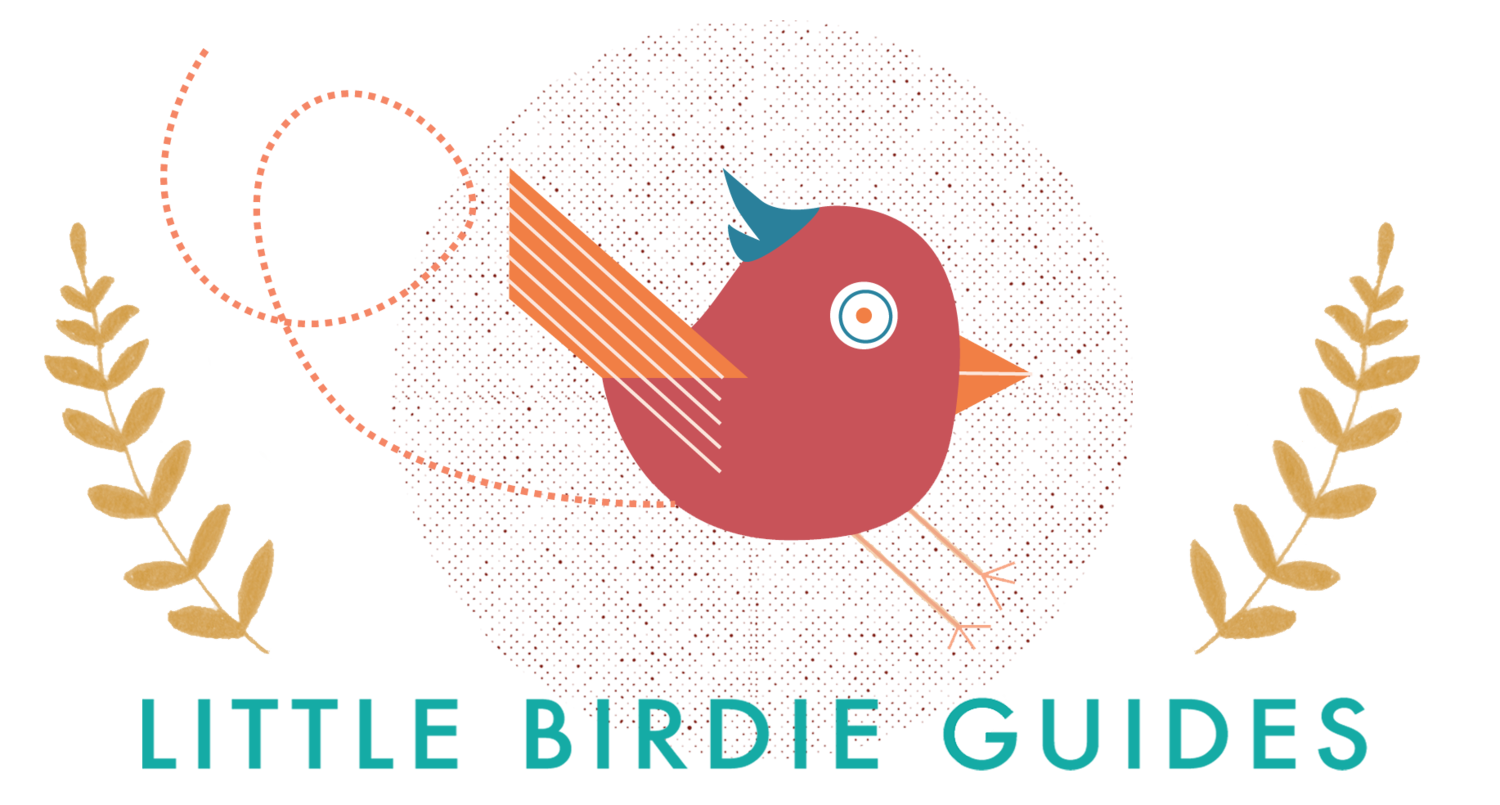 Little birdie guides . Pilgrims clipart plymouth colony