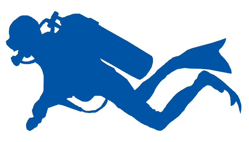 Diver clipart competitive diving. The almanac book of