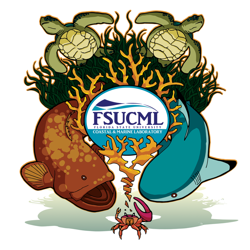 Diver clipart marine science. Special events coastal and