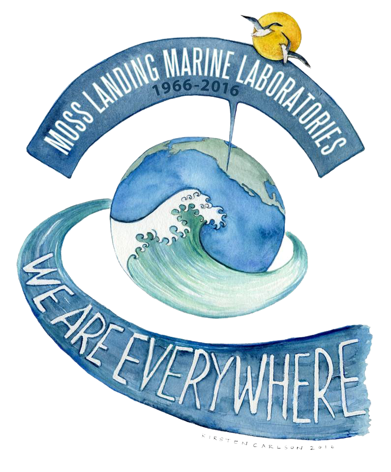 Diver clipart marine science. Message from the director